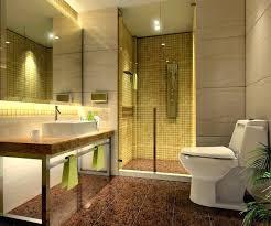 Bathroom Closets India Interior Designer Bathroom Bathrooms Design Ideas Images About On