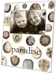 personalized sand dollars f1403 sand dollars personalized picture frame