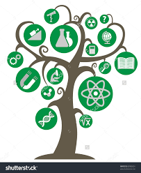 the tree of knowledge with the symbols of science and education in