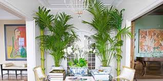 tropical colors for home interior island decorating style interior desisgn