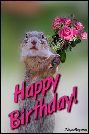 Birthday Animal Meme - birthday animals glitter graphics comments gifs memes and