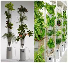 garden diy recover green living wall clover design with symmetric