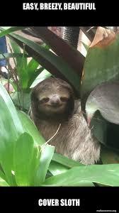 Make A Sloth Meme - easy breezy beautiful cover sloth make a meme