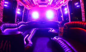 party rentals near me party rental party animals groupon