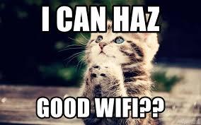 I Can Haz Meme Generator - i can haz good wifi hopeful cat meme generator