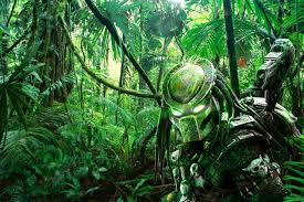 13 darkside jungle tunes christina majcher