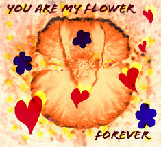 flowers for my flower to my lover free for your ecards greeting cards