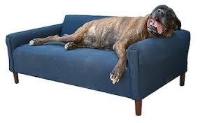 Sofa Bed For Dogs by 5 Best Dog Sofa Beds Cushy Dog Couches For Canine Comfort