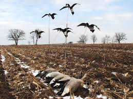 Homemade Goose Blind Goose Tree Flying Decoys U0026 Motion Decoys