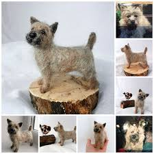 27 best cairn terrier images on cairn terriers dogs