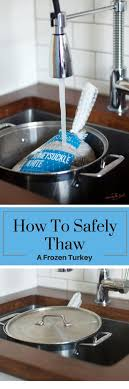 easily and safely thaw a frozen thanksgiving turkey