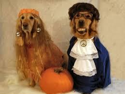 Austin Powers Halloween Costumes Halloween Costume Contest Winners Modern Dog Magazine