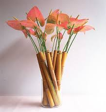 Bamboo Wall Vase Bamboo Plant Arrangements Anthurium Flowers In Bamboo Tubes
