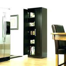 sauder homeplus basic storage cabinet dakota oak sauder homeplus storage cabinet copperpanset club