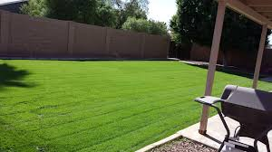 residential lawn care service bv lawn care
