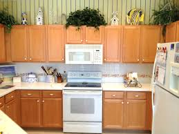 Refinish Kitchen Cabinet Kitchen Cabinets Cabinet Good Modern Kitchen Cabinets