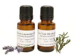 quality tea tree lavender essential henna combo