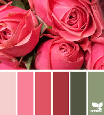 home page roses rose and color palettes