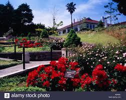 minatono mieru oka park rose garden united kingdom european house