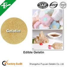 halal edible gelatin powder for marshmallows and ice cream 200