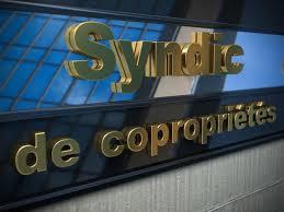 chambre syndicale des syndics de copropriété copropriétaires syndic le manque de réactivité des professionnels