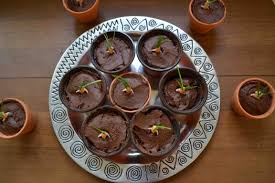 chocolate halloween cakes mandrake cakes with the best chocolate cake ever u2013 teaspoon of nose