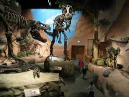 dinosaur museum at thanksgiving point lehi utah by sergey egorov