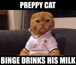 Cute Kitty Memes - the 10 best preppy cat memes cats vs cancer
