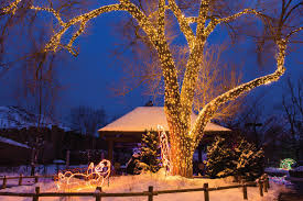 zoo lights at hogle zoo commercial lighting design installation professionals utah