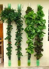 researching diy vertical garden ideas that actually look good