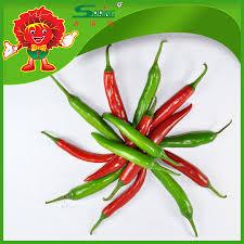 Chili Pepper Home Decor Fresh Red Chilli Pepper Fresh Red Chilli Pepper Suppliers And