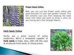 Flower Seeds Online - buy flowers seeds online