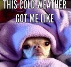 Cold Outside Meme - wtf wednesday it s cold outside up humming a running blog