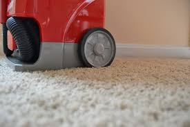 2 young kids 1 very large puppy vs rug doctor portable spot cleaner