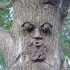 tree face amazon com mountain man tree face iron stone moss garden