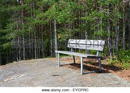 old wood bench in forest stock photo royalty free image 88272270