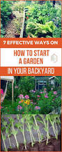 unique design how to start a raised bed garden in your backyard