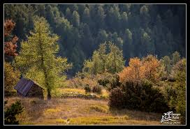 chambres d hotes valberg valberg en automne chalet sainte valberg