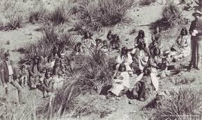 american indian tribes and communities in arizona the arizona