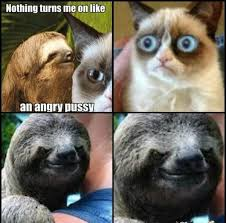 Sloth Meme Images - hilarious usual dirty sloth memes image quotesbae