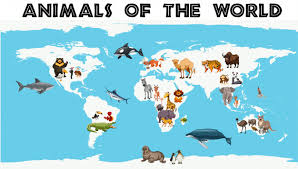 different types of animals around the world on the map vector free
