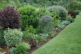 Garden Shrubs Ideas Garden Shrubs Ideas Home Outdoor Decoration