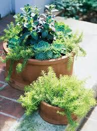 291 best garden containers images on pinterest garden ideas