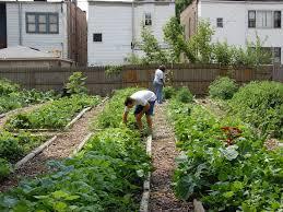 backyard 32 gardening idea garden ideas pinterest famous
