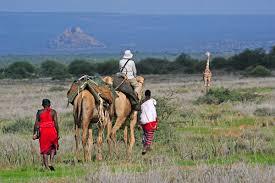 safari 10 of the best safaris for 2015 cnn travel