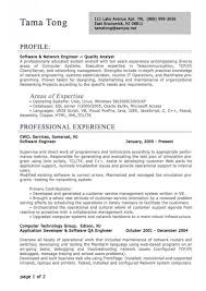 resume exles for it professional resume exles musiccityspiritsandcocktail