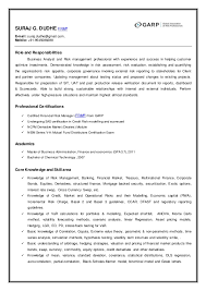 Business Analyst Roles And Responsibilities Resume Suraj Resume
