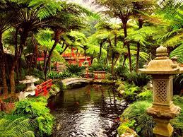 Fairy Gardens Ideas by Appmon