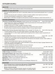 Resume Samples For Executives executive recruiter resume