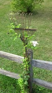 Build A Rose Trellis Best 25 Garden Trellis Ideas On Pinterest Trellis Trellis